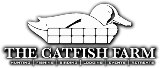 The Catfish Farm